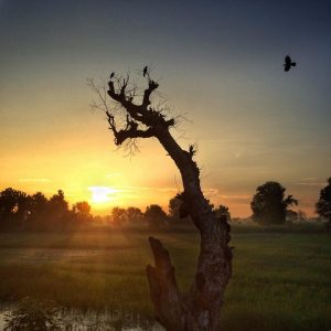 Manu yadav photography