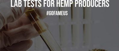 Importance of Dry Weight Potency Lab Tests for Hemp Producers